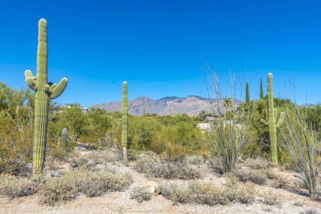 4625 N Camino Ocotillo, Tucson, AZ 85718 (#21728835) :: RJ Homes Team