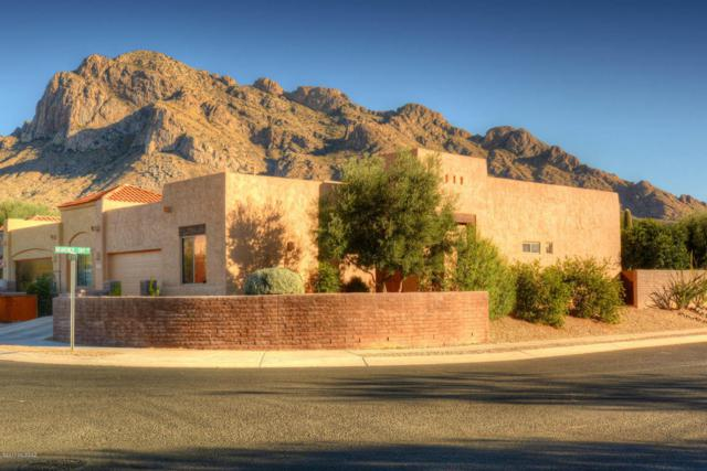162 E Sky Light Street, Oro Valley, AZ 85737 (#21730128) :: RJ Homes Team