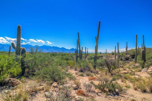 1033 Tortolita Mountain A, Oro Valley, AZ 85755 (#21731424) :: My Home Group - Tucson