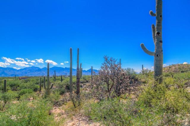 1049 Tortolita Mountain C, Oro Valley, AZ 85755 (#21731456) :: My Home Group - Tucson