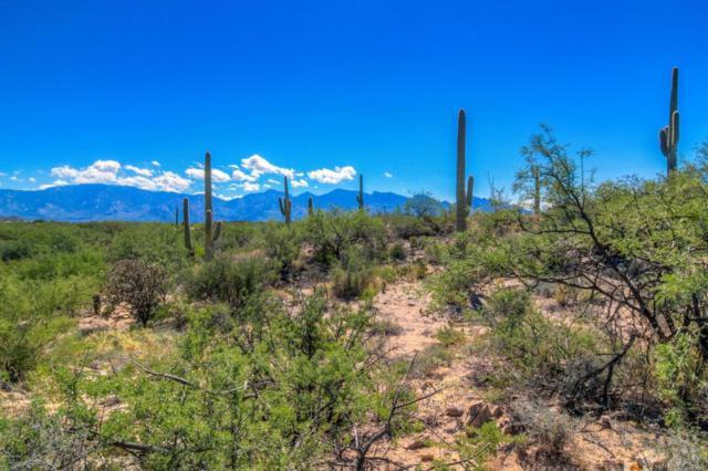 1041 Tortolita Mountain E, Oro Valley, AZ 85755 (#21731458) :: My Home Group - Tucson
