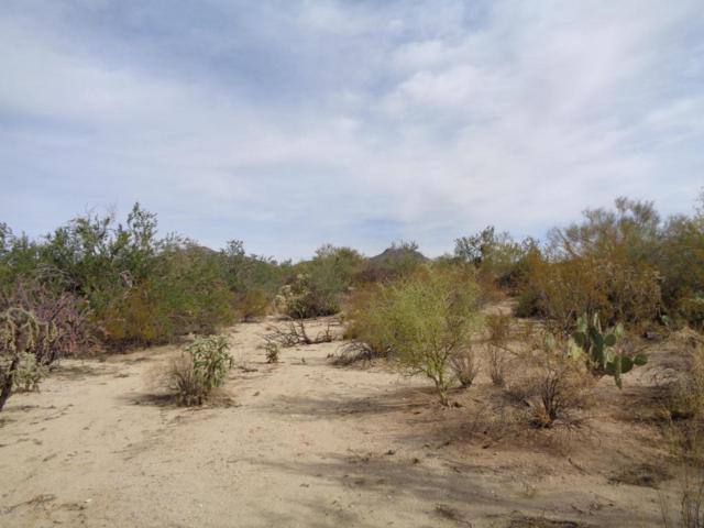 00 No Name Assigned, Marana, AZ 85658 (#21731489) :: Gateway Partners at Realty Executives Tucson Elite