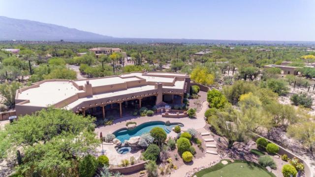 12851 E Camino Ancho, Tucson, AZ 85749 (#21800055) :: The Josh Berkley Team