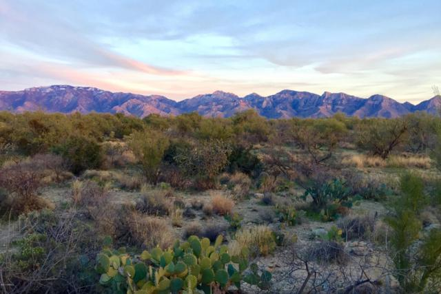 1690 W Tortolita Vista Lane X, Oro Valley, AZ 85755 (#21800892) :: Long Realty - The Vallee Gold Team