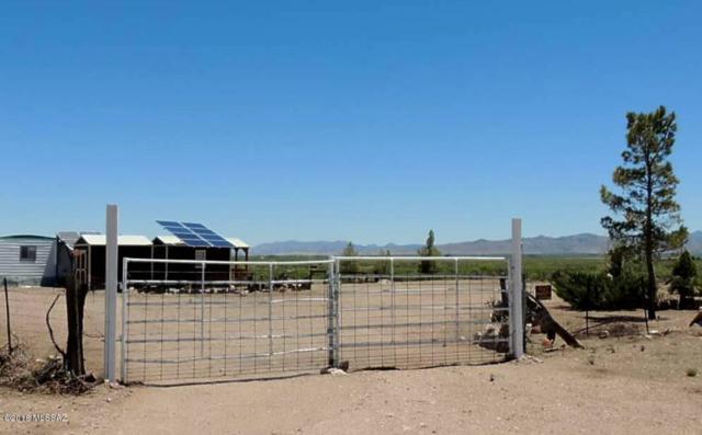 7710 E Cuellars Trail, Pearce, AZ 85625 (#21803077) :: Long Realty - The Vallee Gold Team