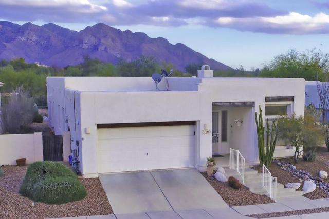 10802 N Sand Canyon Place, Tucson, AZ 85737 (#21804904) :: Gateway Partners at Realty Executives Tucson Elite