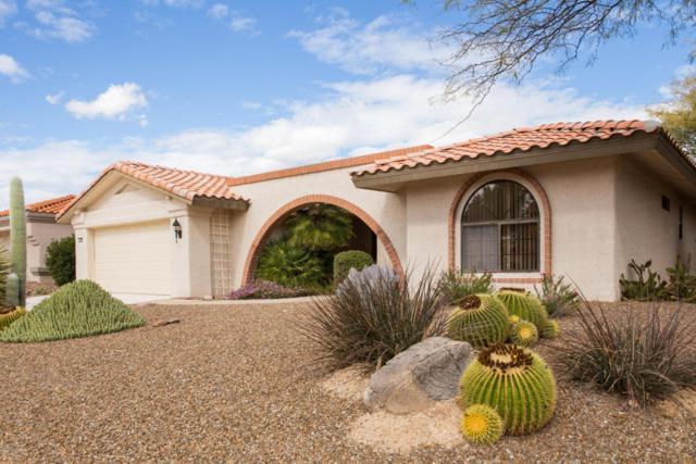 1055 E Coachwood Drive, Oro Valley, AZ 85755 (#21805027) :: RJ Homes Team