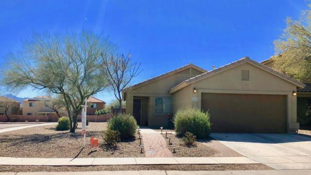 435 W Amber Hawk Court, Green Valley, AZ 85614 (#21805078) :: Long Realty Company