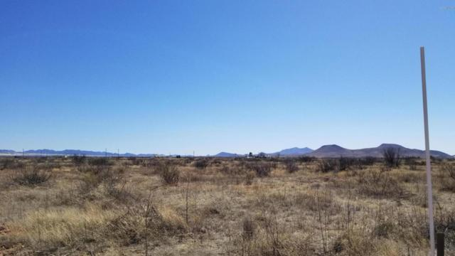 TBD E Trails End #39, Pearce, AZ 85625 (#21805384) :: RJ Homes Team