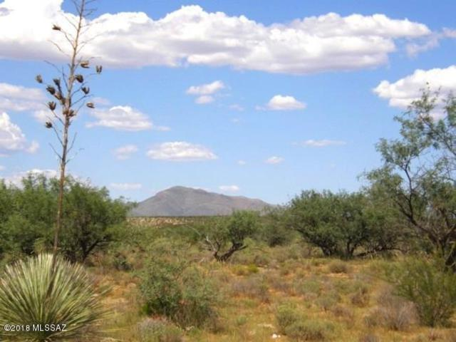 17A E Two Hills Back Road 17A, Benson, AZ 85602 (MLS #21807554) :: The Property Partners at eXp Realty