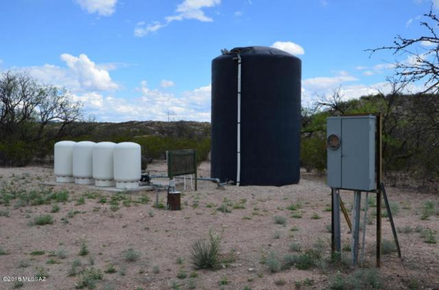 TBD N Cascabel Road D, Benson, AZ 85602 (#21807987) :: Long Realty - The Vallee Gold Team