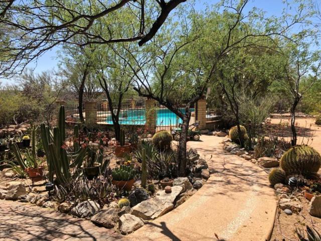 3025 N Soldier Trail, Tucson, AZ 85749 (#21808302) :: Long Realty Company