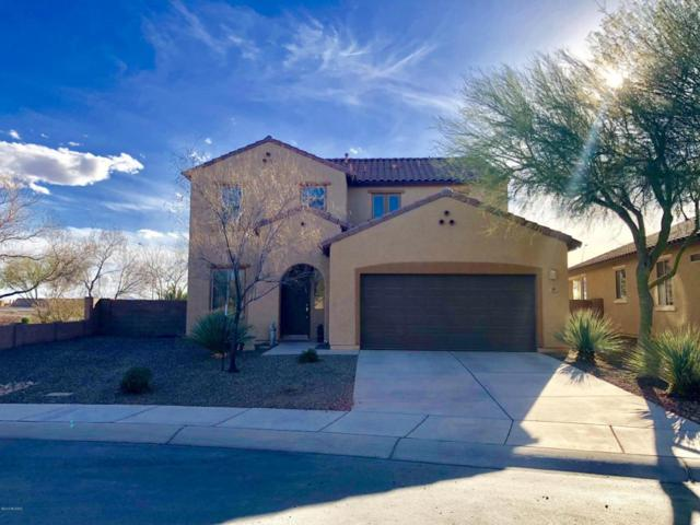 12597 N Greenberry Drive, Marana, AZ 85653 (#21808506) :: The Josh Berkley Team
