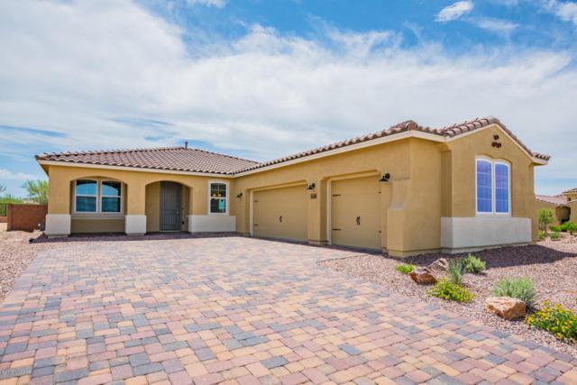 14136 N Golden Barrel Pass W, Marana, AZ 85658 (#21810102) :: Long Realty Company