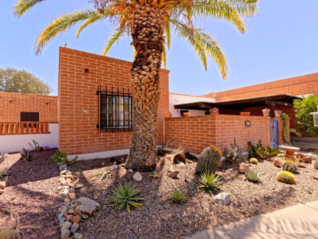 343 S Paseo Chico, Green Valley, AZ 85614 (#21810150) :: Long Realty - The Vallee Gold Team
