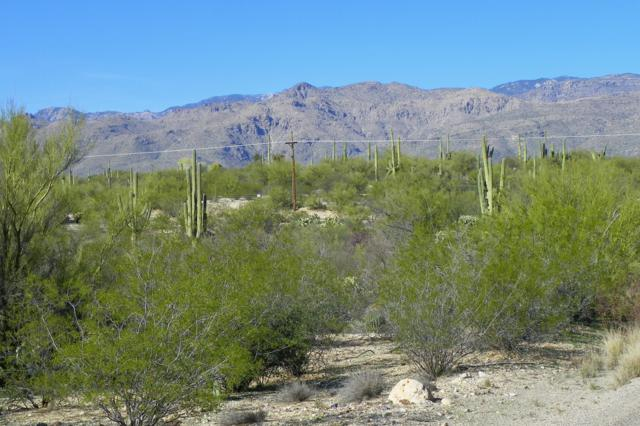 E Cape Horn Drive #13, Tucson, AZ 85749 (#21811508) :: Long Realty - The Vallee Gold Team