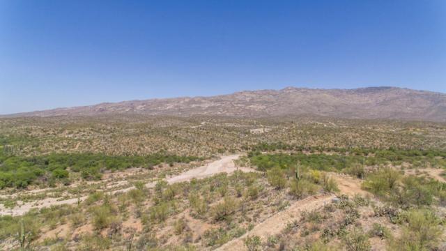 N Rincon Mountain View Road, Vail, AZ 85641 (#21811684) :: RJ Homes Team
