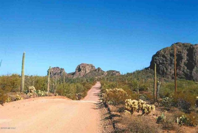 XX S Owl Head Ranch Road 40AC, Marana, AZ 85658 (#21811705) :: RJ Homes Team