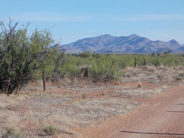 Vacant Land #5, Pearce, AZ 85625 (#21812958) :: Long Realty Company