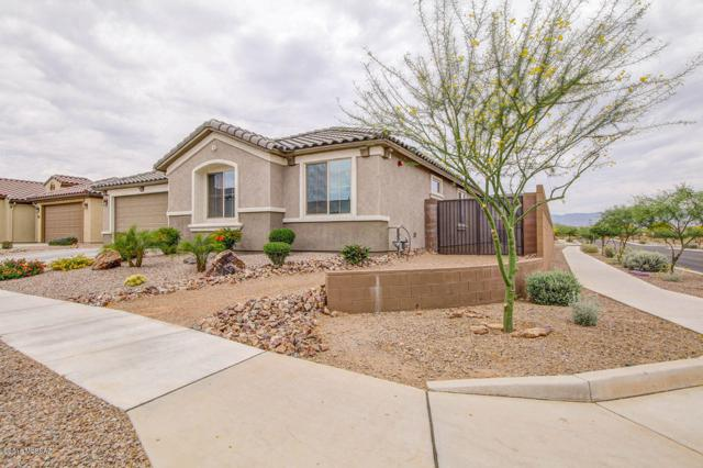 10967 E Actinidia Street, Tucson, AZ 85747 (#21813299) :: The Josh Berkley Team
