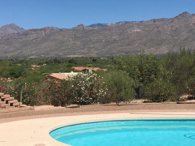 11661 E Lenher Schwerin Trail, Tucson, AZ 85749 (#21813523) :: Long Realty Company