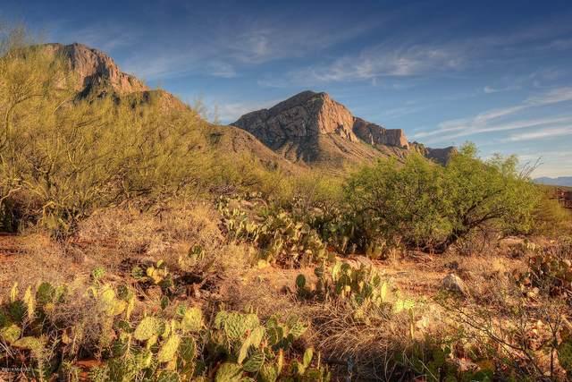 2590 E Ponticello Boulevard #1, Oro Valley, AZ 85737 (#21813944) :: Keller Williams
