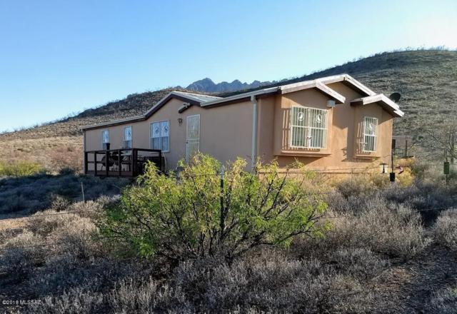 877 W Bo Ma Trail, Portal, AZ 85632 (#21814070) :: Long Realty - The Vallee Gold Team