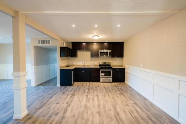 575 W Camino Yucca, Oracle, AZ 85623 (MLS #21814350) :: The Property Partners at eXp Realty