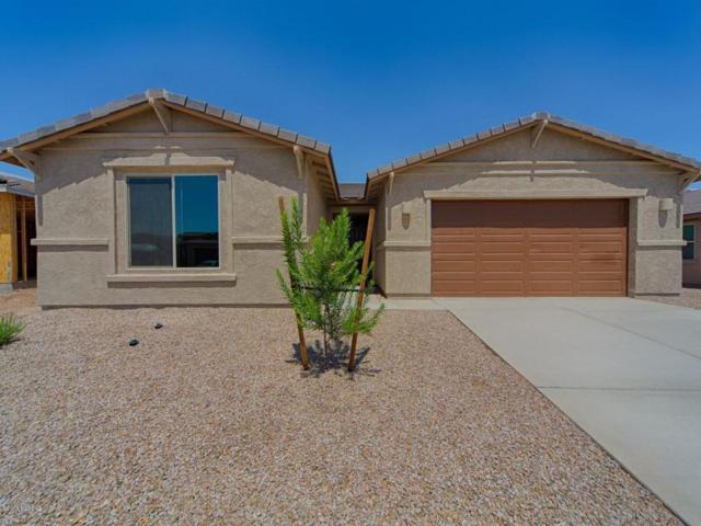 12323 N Sandby Green Drive, Marana, AZ 85653 (#21814634) :: Long Realty Company