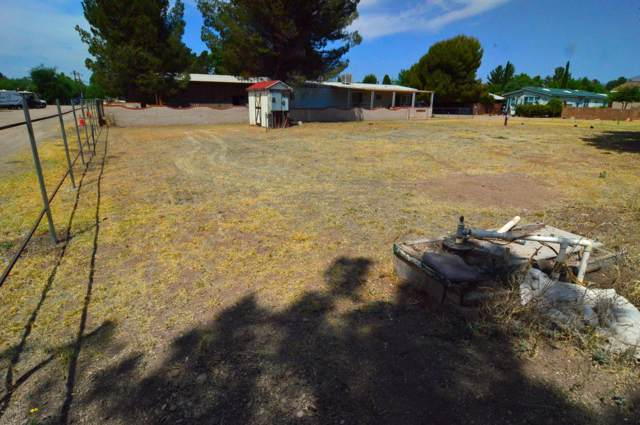 132 Naugle Avenue ., Patagonia, AZ 85624 (MLS #21815834) :: The Luna Team