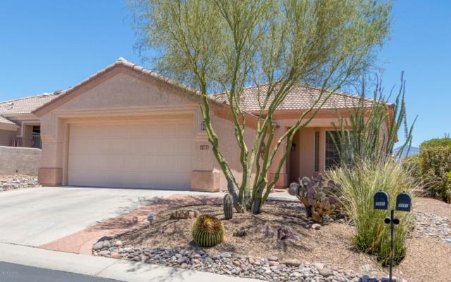 4985 W Desert Chicory Place, Marana, AZ 85658 (#21816351) :: Long Realty - The Vallee Gold Team