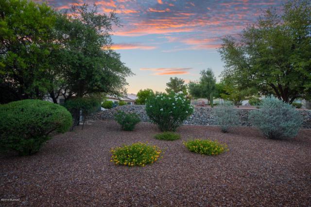 63650 E Haven Lane, Tucson, AZ 85739 (#21816386) :: The KMS Team