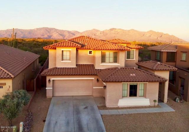 12156 N Quail Feather Boulevard, Marana, AZ 85658 (#21816534) :: Long Realty Company