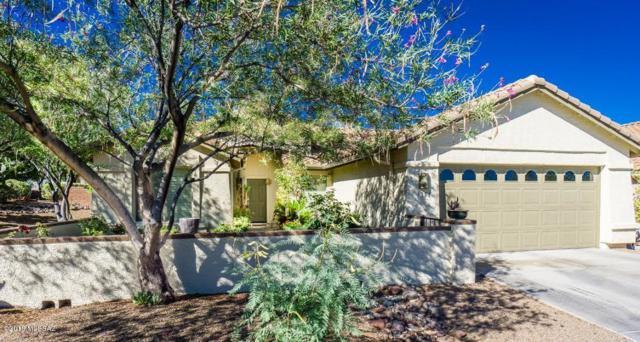 1351 N Mahogany Gulch Lane, Green Valley, AZ 85614 (#21817229) :: Long Realty Company