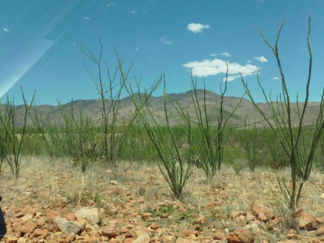 No Site Address 20A, Bisbee, AZ 85603 (#21818191) :: The Josh Berkley Team
