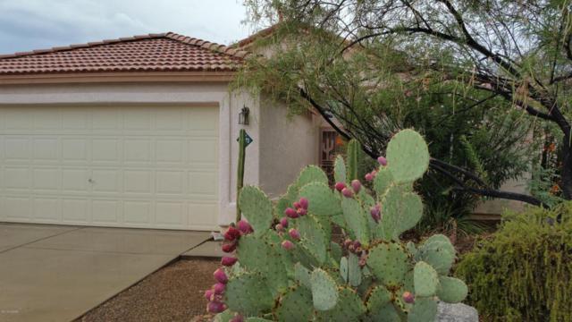 12373 N Brightridge Drive, Oro Valley, AZ 85755 (#21819175) :: Long Luxury Team - Long Realty Company