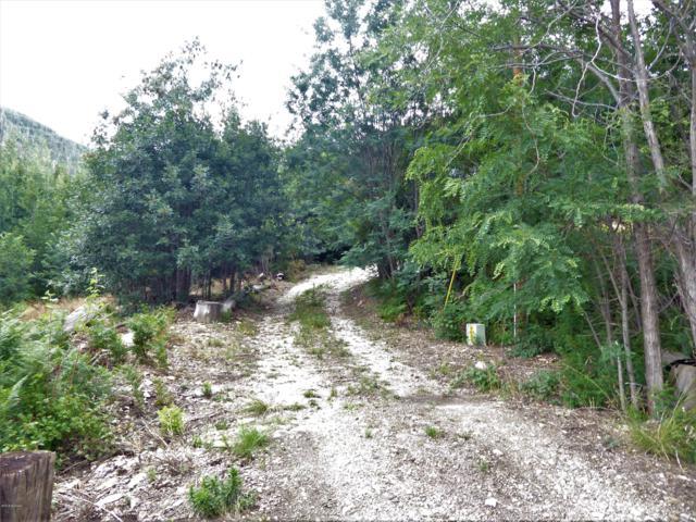 12751 E Miners Ridge, Mt. Lemmon, AZ 85619 (#21819306) :: eXp Realty