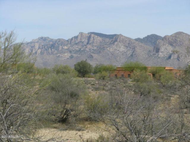 2275 W Lambert Lane #47, Oro Valley, AZ 85742 (#21819881) :: Gateway Partners at Realty Executives Tucson Elite