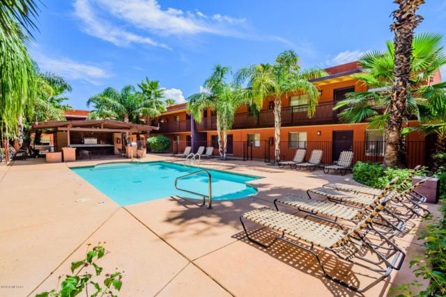 55 N Cherry Avenue #104, Tucson, AZ 85719 (#21819932) :: RJ Homes Team