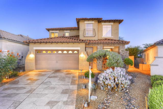1009 W Leatherleaf Drive, Tucson, AZ 85755 (#21820300) :: The KMS Team