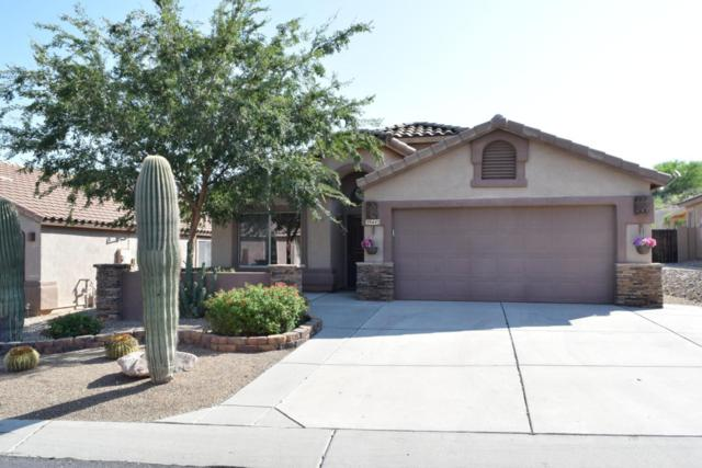 39443 Cinch Strap Place, Tucson, AZ 85739 (#21820946) :: Long Realty Company