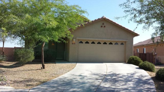 11702 W Stone Hearth Street, Marana, AZ 85658 (#21823762) :: Long Realty Company