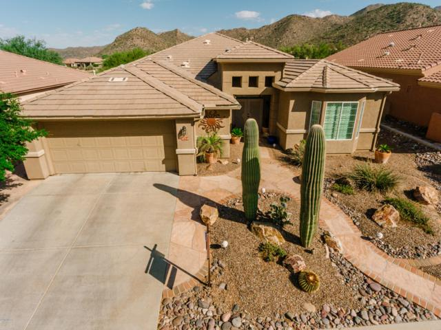 5154 W Desert Poppy Lane, Marana, AZ 85658 (#21824890) :: Long Realty Company