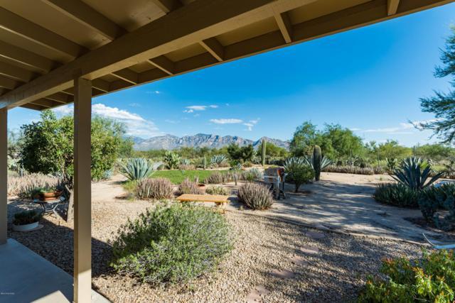 1951 W Lemonwood Road, Tucson, AZ 85755 (#21825066) :: The Josh Berkley Team