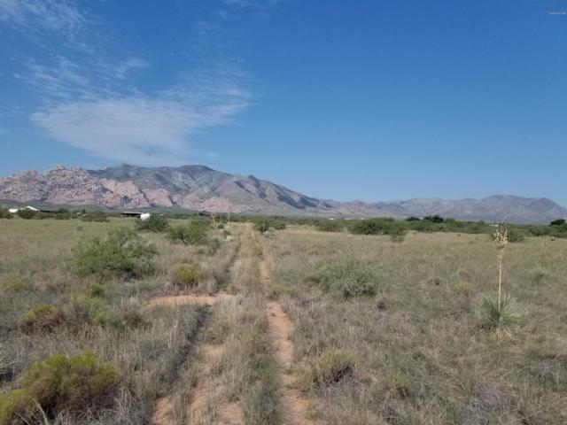 TBD Warner St #6, Cochise, AZ 85606 (#21825284) :: Long Realty - The Vallee Gold Team