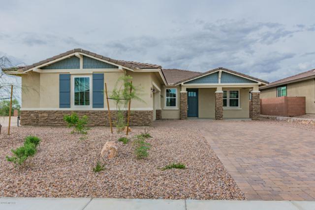 14145 N Golden Barrel Pass, Marana, AZ 85658 (#21825751) :: Long Realty Company