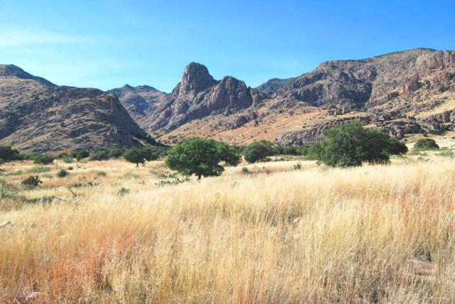 TBD S Owls Butte Trail #28, Portal, AZ 85632 (#21826678) :: The KMS Team
