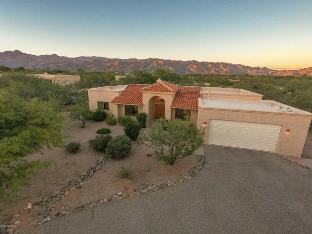 2480 N Winding Place, Tucson, AZ 85749 (#21827430) :: The Josh Berkley Team