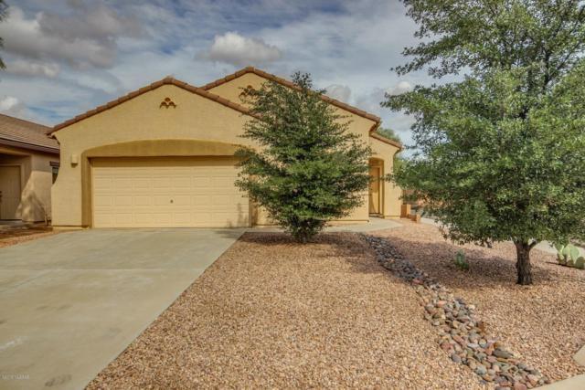 9636 N Deimos Drive, Marana, AZ 85743 (#21827700) :: Long Realty Company