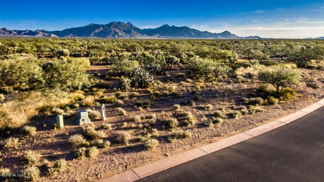 144 N Scenic Vista Drive #209, Sahuarita, AZ 85629 (#21829365) :: Long Realty Company